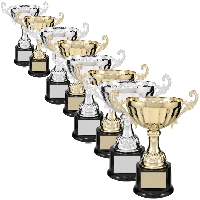 100 Series Trophy Cups
