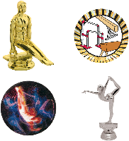 Gymnastic Trophy Parts