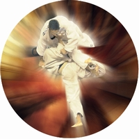 "2"" Karate Photo Trophy Insert"