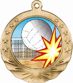 3D Volleyball Motion Award Medal 2 3/4""