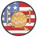 "2"" US Flag Volleyball Mylar insert"