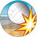 "2"" 3D Motion Trophy Insert - Volleyball"
