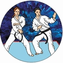 "2"" 3D Motion Trophy Insert - Karate"