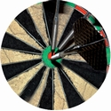 "2"" DARTS Photo Mylar"