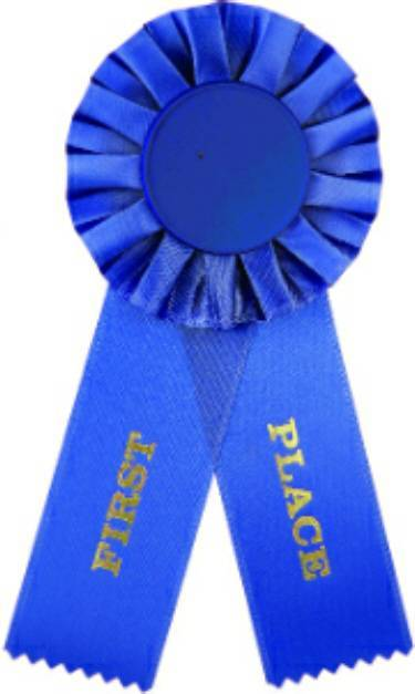 Blue 1st Place Rosette Ribbon With 2 Quot Insert Holder
