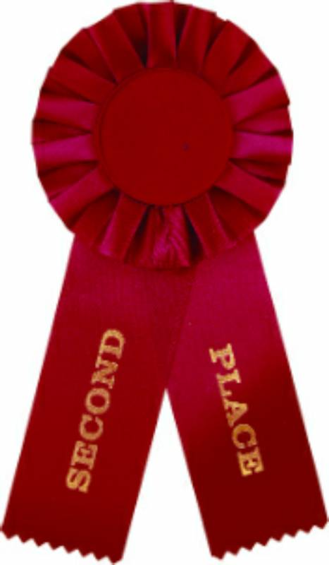 Red 2nd Place Rosette Ribbon With 2 Quot Insert Holder