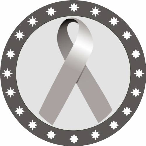 "2"" Silver Awareness Ribbon Trophy Insert"
