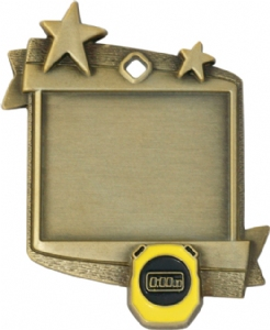Frame Award Medal - Swimming