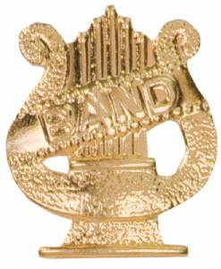 Gold Band Lapel Chenille Insignia Pin - Metal