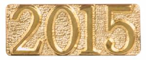 Gold 2015 Lapel Chenille Insignia Pin - Metal