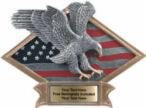 "6"" X 8 1/2"" Eagle Diamond Trophy Plate Hand Painted"