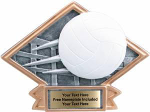 "4 1/2"" X 6"" Vollyball Diamond Trophy Plate Hand Painted"