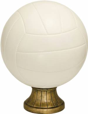 "10 1/2"" Color Volleyball Resin"