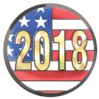 "2"" US Flag 2018 Holographic Mylar Trophy Insert"