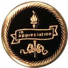 "2"" Appreciation Metal Trophy Insert"
