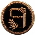 "2"" Bible Metal Trophy Insert"