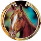 "Horsehead 2"" Holographic Insert"